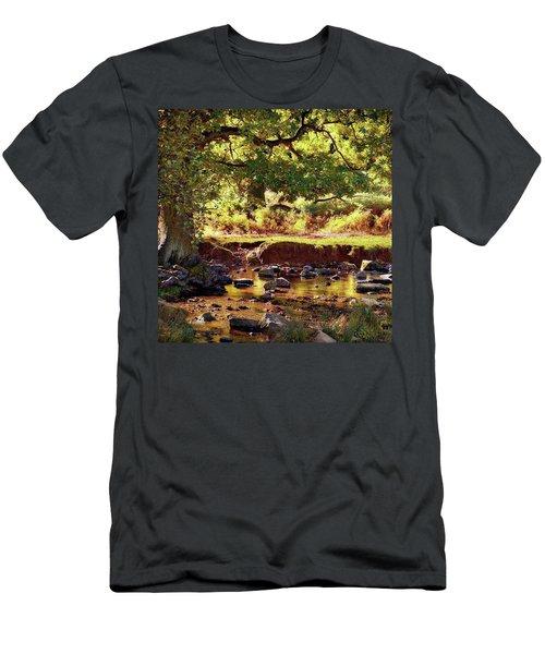 The River Lin , Bradgate Park Men's T-Shirt (Athletic Fit)