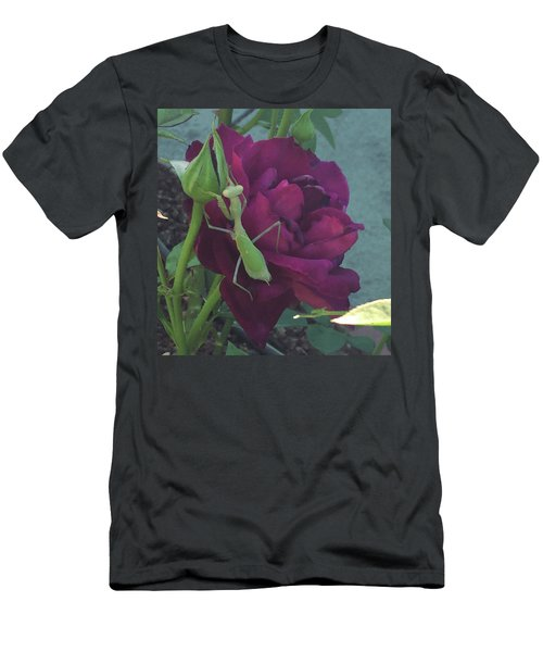 The Rose And Mantis Men's T-Shirt (Athletic Fit)