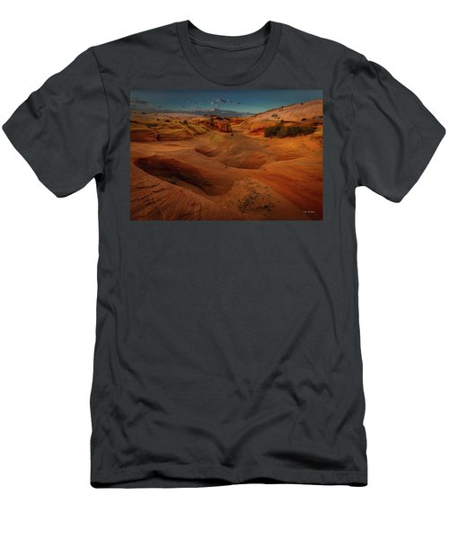The Wash Of Subtle Shapes And Colors Men's T-Shirt (Athletic Fit)