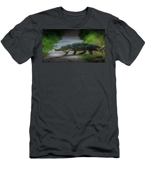 This Is My Trail Men's T-Shirt (Athletic Fit)