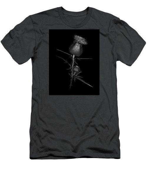 Thistle 1 Men's T-Shirt (Slim Fit) by Simone Ochrym