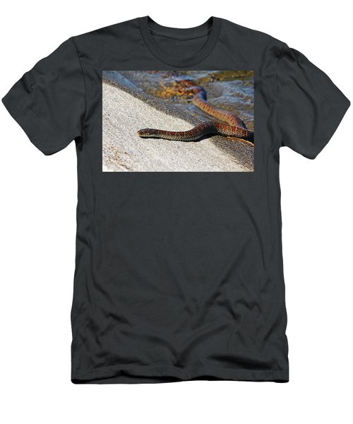 Thistle Island Visitor Men's T-Shirt (Athletic Fit)
