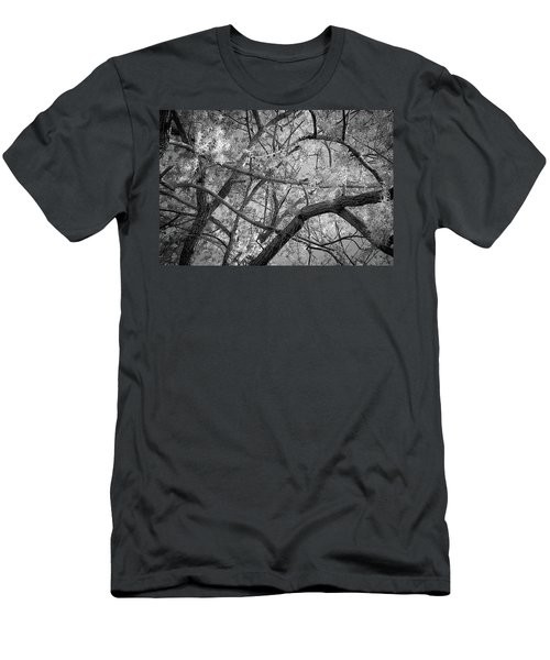 Those Branches -  Men's T-Shirt (Athletic Fit)
