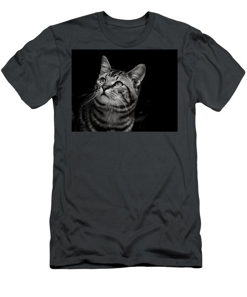 Thoughtful Tabby Men's T-Shirt (Athletic Fit)