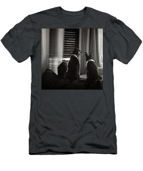 Three Min Pin Dogs Men's T-Shirt (Athletic Fit)