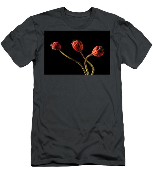 Three Rose Hips Men's T-Shirt (Athletic Fit)