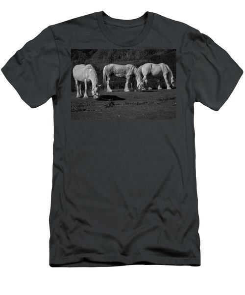 Three Shires Men's T-Shirt (Athletic Fit)