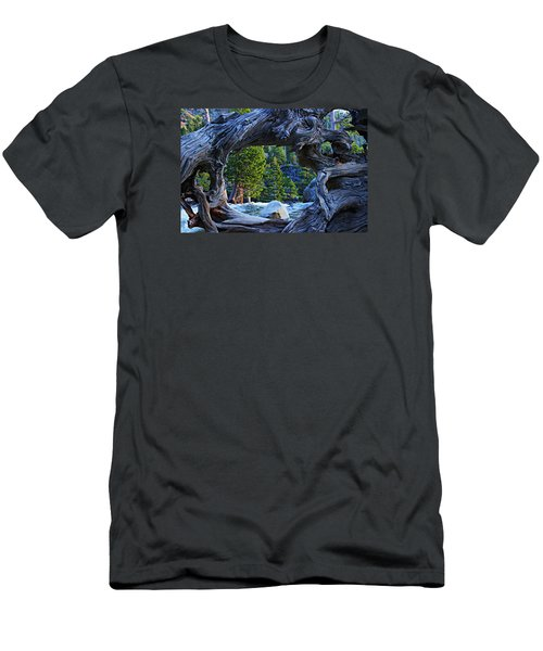Through The Looking Glass Men's T-Shirt (Slim Fit) by Sean Sarsfield