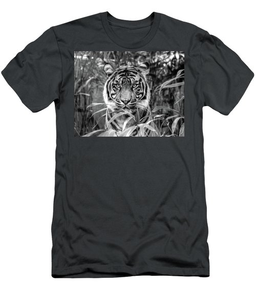 Tiger B/w Men's T-Shirt (Athletic Fit)