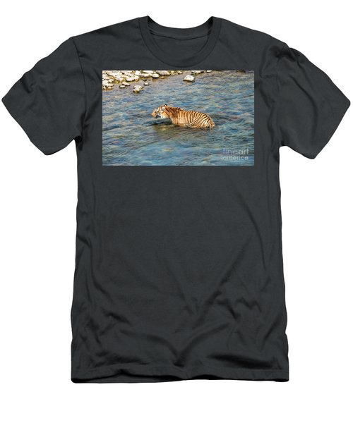 Tiger In The Water Men's T-Shirt (Athletic Fit)