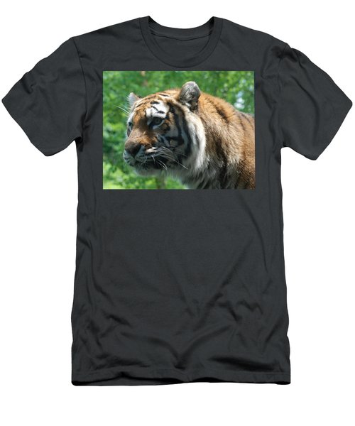 Men's T-Shirt (Slim Fit) featuring the photograph Tiger Profile by Richard Bryce and Family