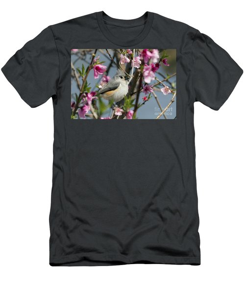 Titmouse And Peach Blossoms Men's T-Shirt (Athletic Fit)