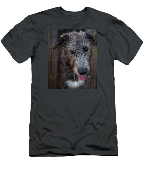 Toby, The Irish Wolfhound Pup Men's T-Shirt (Athletic Fit)