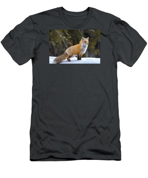 Men's T-Shirt (Slim Fit) featuring the photograph Totally Foxy by Yeates Photography