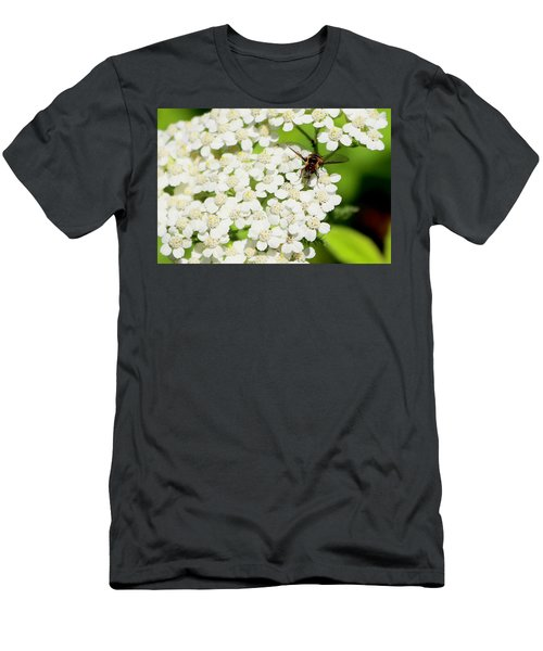 Transverse Flower Fly Men's T-Shirt (Athletic Fit)