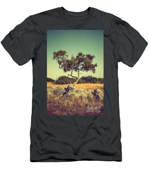 Tree And Rocks Men's T-Shirt (Athletic Fit)