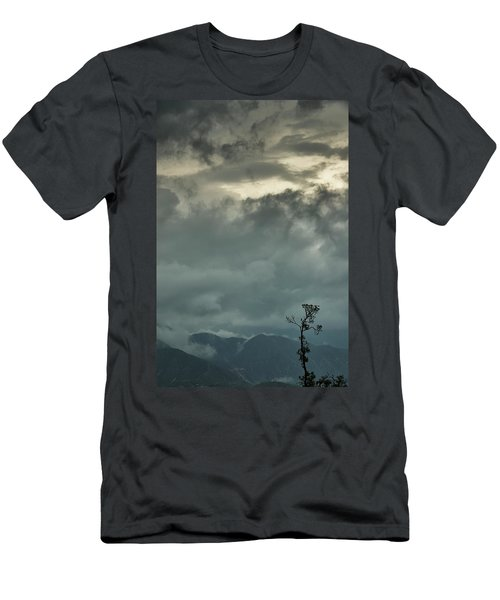 Tree. Bright Light Men's T-Shirt (Athletic Fit)