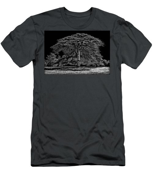 Tree In England Men's T-Shirt (Athletic Fit)