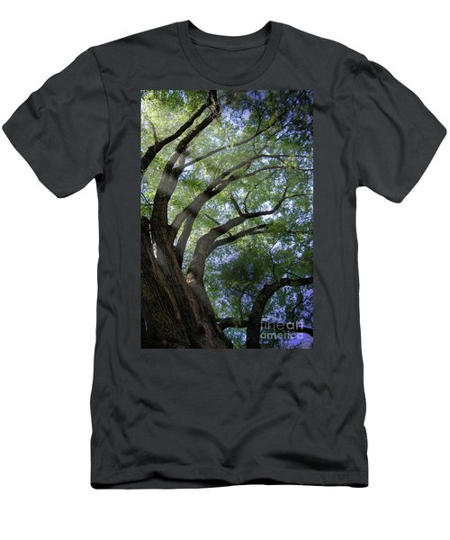 Men's T-Shirt (Slim Fit) featuring the photograph Tree Rays by Brian Jones