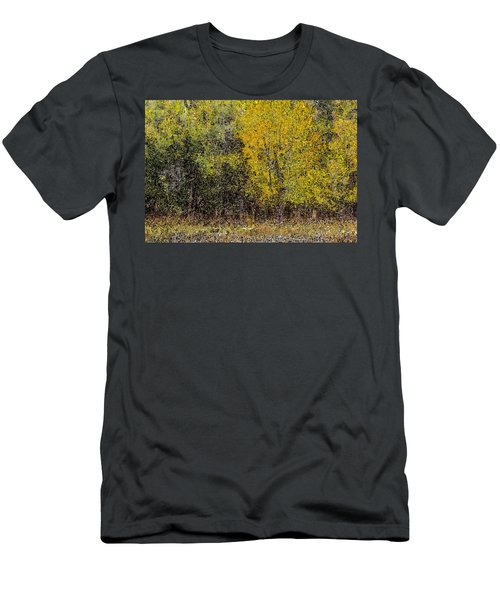 Trees In Fall With Texture Men's T-Shirt (Slim Fit) by John Brink