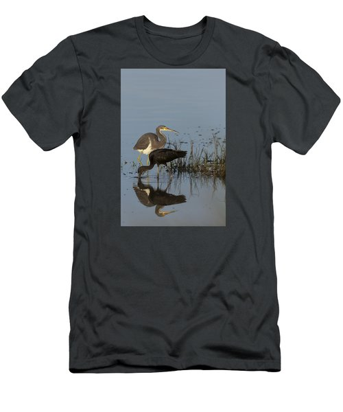 Tri-colored Heron And Glossy Ibis Men's T-Shirt (Athletic Fit)