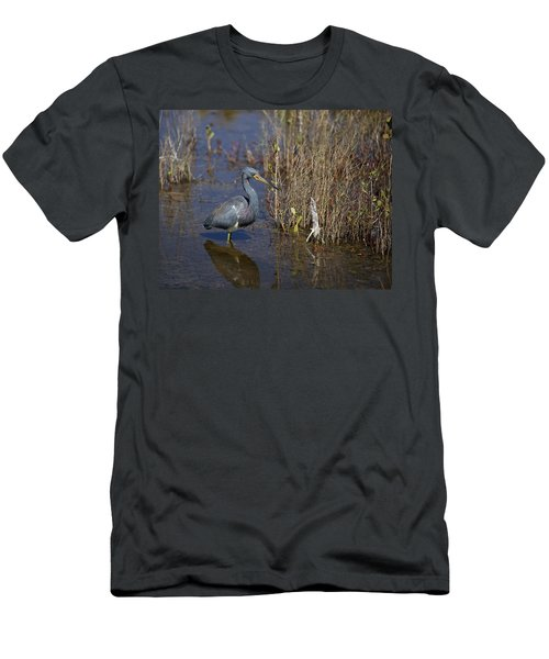 Tricolored Heron Wading Men's T-Shirt (Athletic Fit)