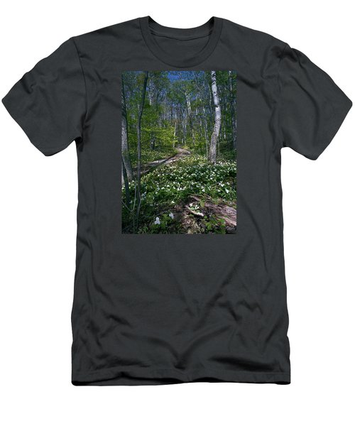 Trillium Woods No. 2 Men's T-Shirt (Athletic Fit)