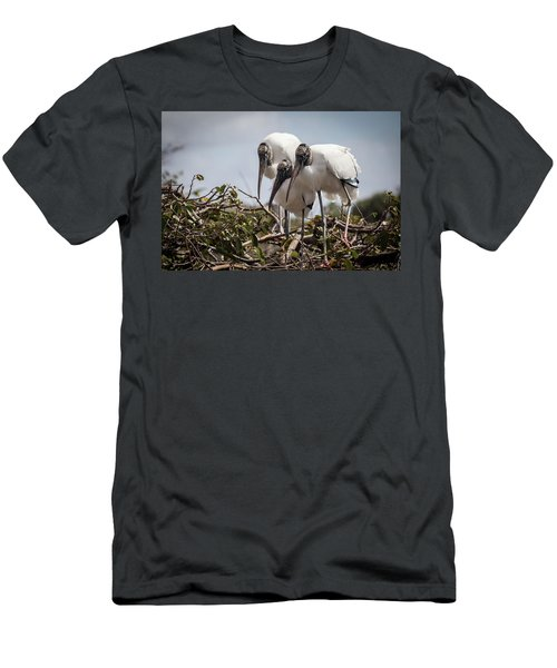 Trio Of Storks Men's T-Shirt (Slim Fit) by Jim Gillen