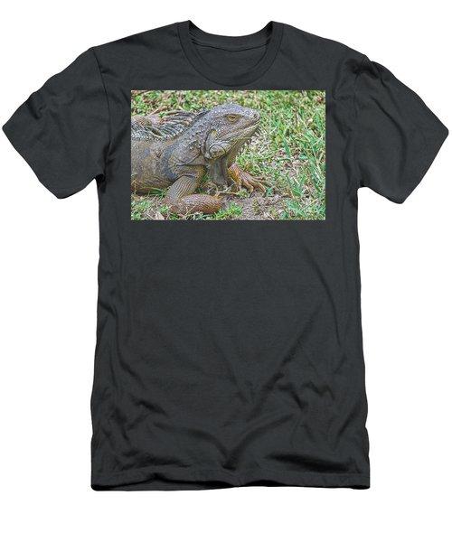 Tropical Wonder Men's T-Shirt (Athletic Fit)