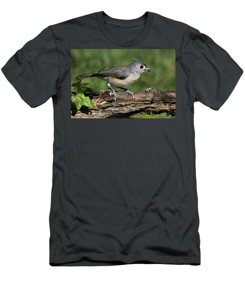 Tufted Titmouse On Tree Branch Men's T-Shirt (Athletic Fit)
