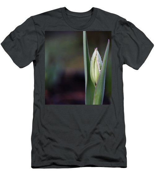 Tulip Bud Men's T-Shirt (Slim Fit) by Katie Wing Vigil