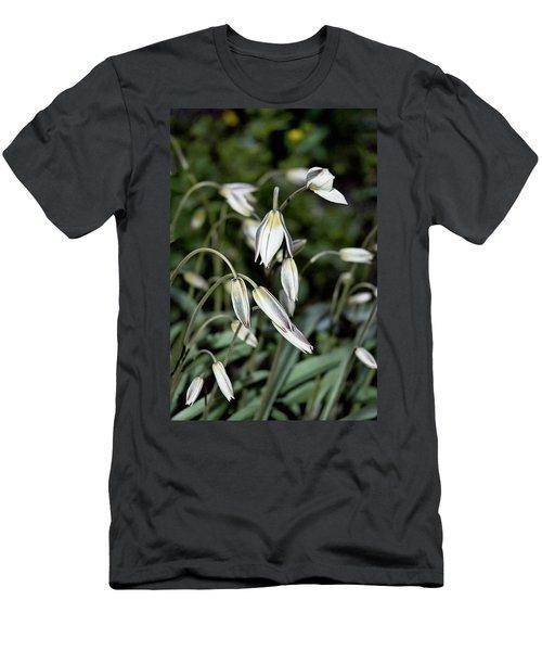 Tulipa Turkestanica Men's T-Shirt (Athletic Fit)
