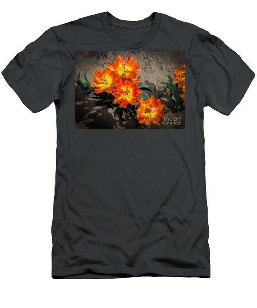 Tulips Soaking Up The Sun Men's T-Shirt (Slim Fit) by John Roberts