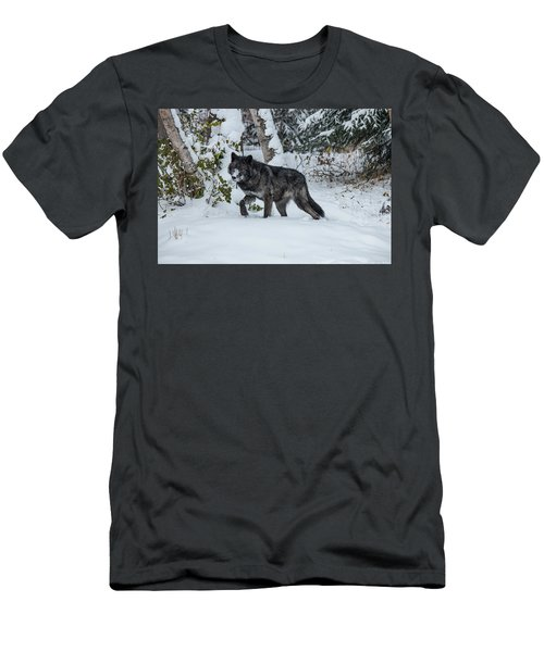Tundra Wolf 6701 Men's T-Shirt (Athletic Fit)