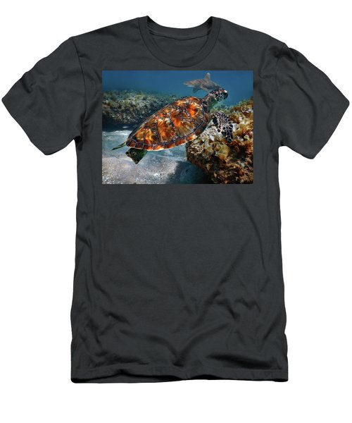 Turtle And Shark Swimming At Ocean Reef Park On Singer Island Florida Men's T-Shirt (Slim Fit) by Justin Kelefas