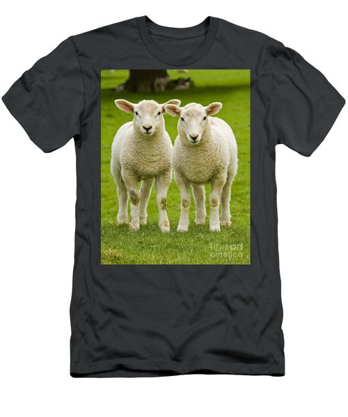 Twin Lambs Men's T-Shirt (Athletic Fit)
