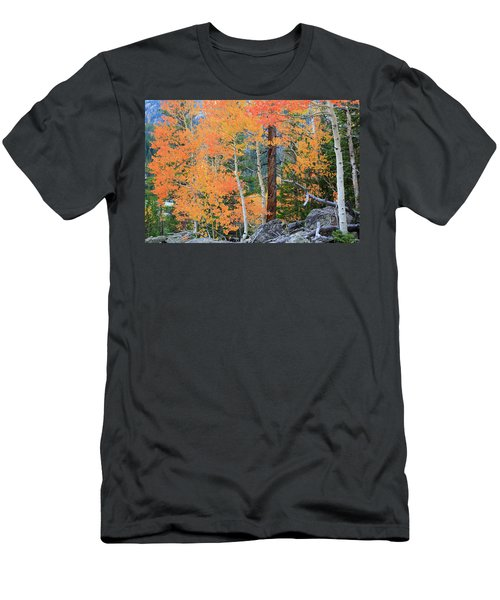 Men's T-Shirt (Slim Fit) featuring the photograph Twisted Pine by David Chandler