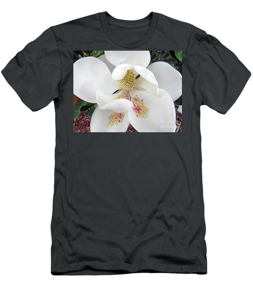 Unfolding Beauty Of Magnolia Men's T-Shirt (Athletic Fit)