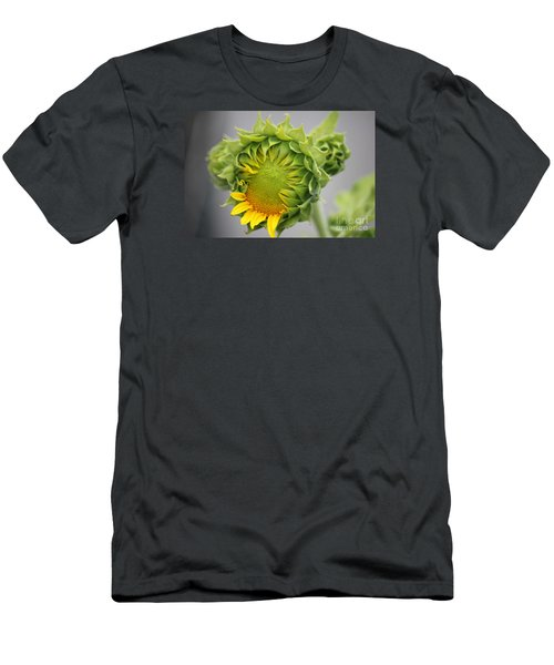 Unfolding Sunflower Men's T-Shirt (Athletic Fit)
