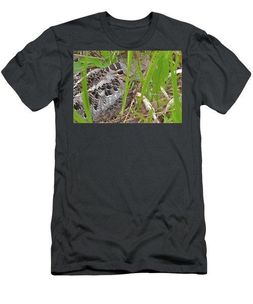 Velvet Eyes, Woodcock Eyes Men's T-Shirt (Athletic Fit)