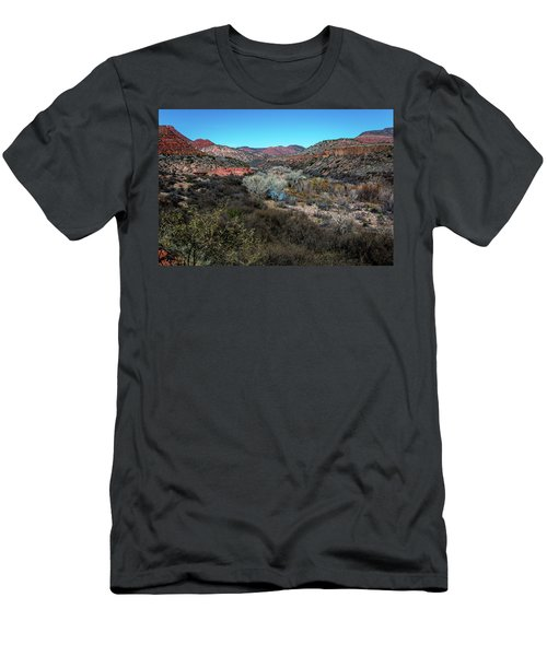 Verde Canyon Oasis Men's T-Shirt (Athletic Fit)