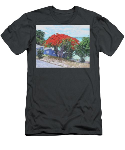 View From Hill Street Men's T-Shirt (Athletic Fit)
