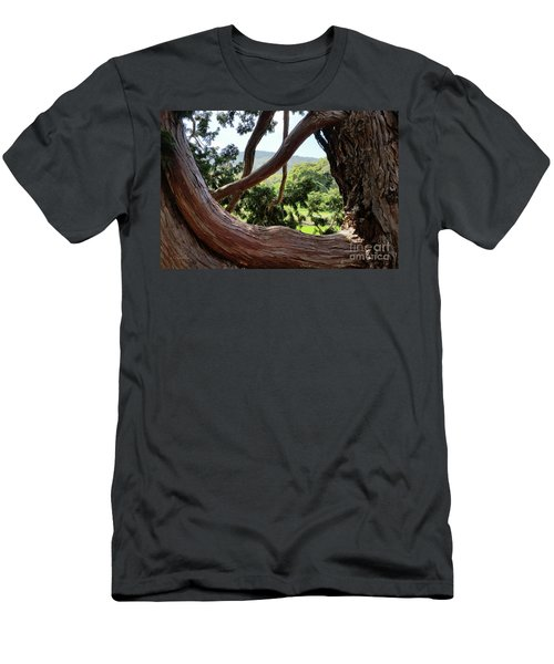 View Through The Tree Men's T-Shirt (Athletic Fit)