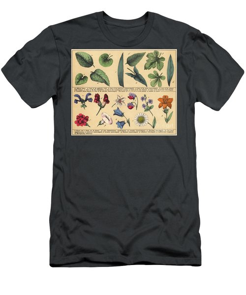 Vintage Botanical Print Showing Variety Of Leaves And Flowers Men's T-Shirt (Athletic Fit)