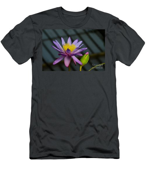 Violet And Yellow Water Lily Flower With Unopened Bud Men's T-Shirt (Athletic Fit)