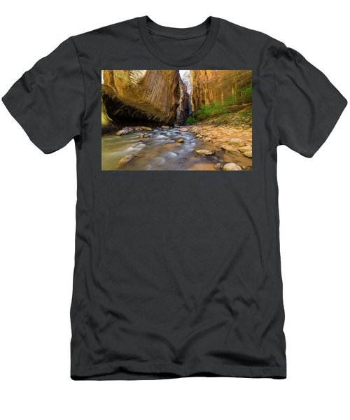 Virgin River - Zion National Park Men's T-Shirt (Athletic Fit)