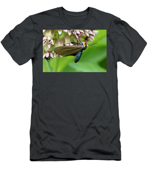 Virginia Ctenucha Moth Men's T-Shirt (Athletic Fit)