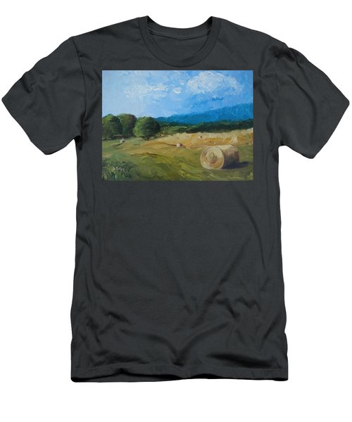 Virginia Hay Bales II Men's T-Shirt (Athletic Fit)