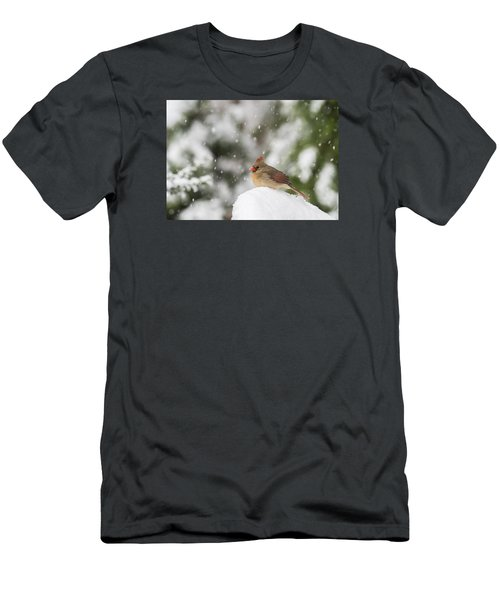 Waiting Out The Snow Men's T-Shirt (Athletic Fit)
