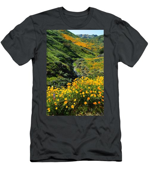 Walker Canyon Vista Men's T-Shirt (Athletic Fit)